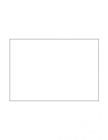 Drapeau 100x70cm